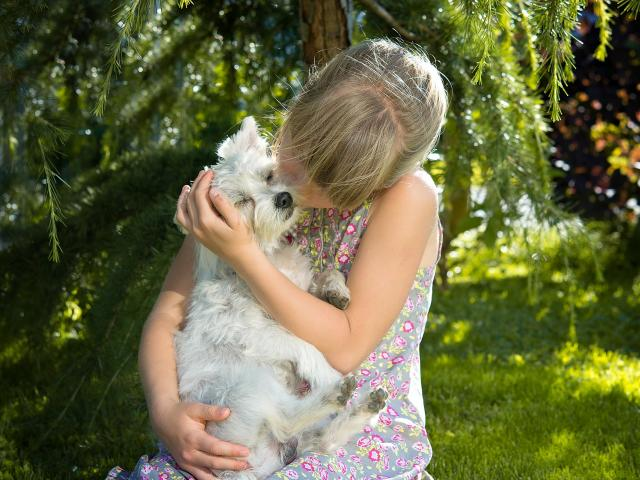 Girl kissing small white dog in her arms